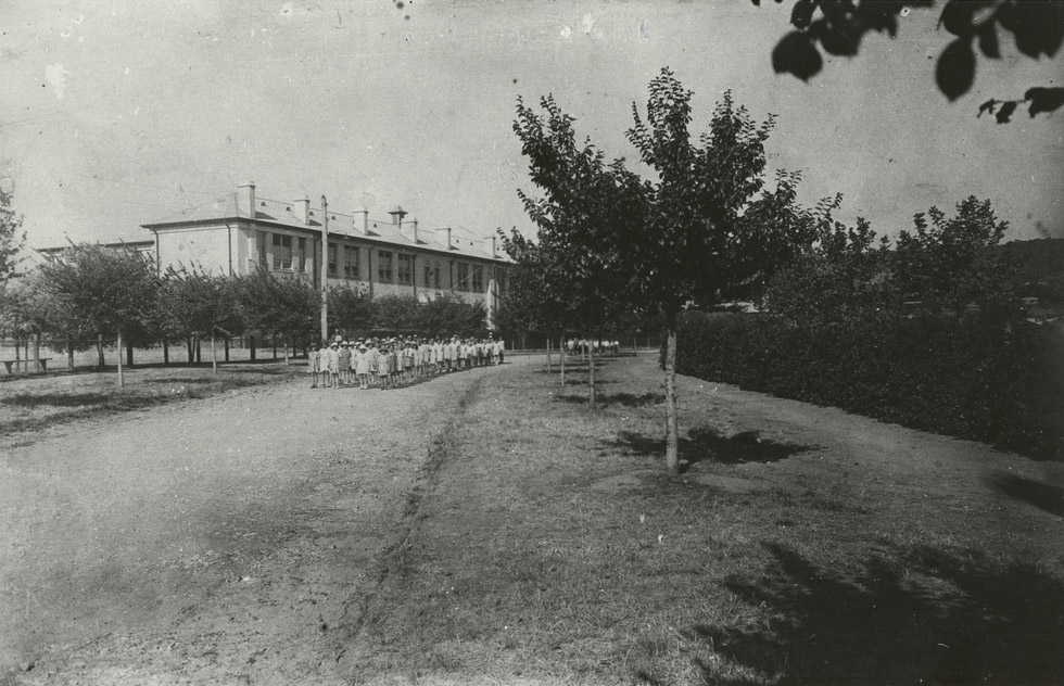 1930. View of primary school from Windsor Ave. State Library of South Australia.